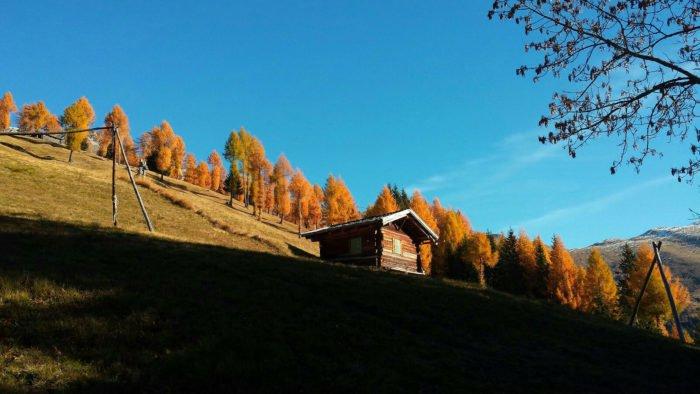 Herbst_
