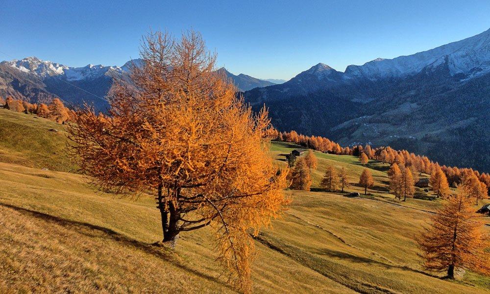 Wanderurlaub im Passeiertal - Erkunden Sie die Natur Südtirols